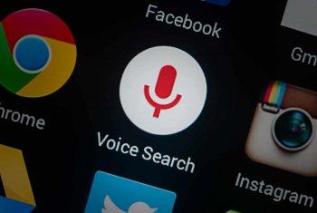 voice search markup
