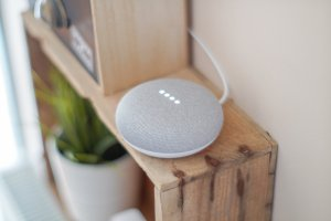 voice search- Google home