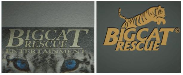 Bigcat Logos
